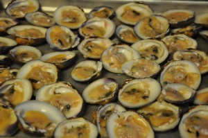 Shucked Clams